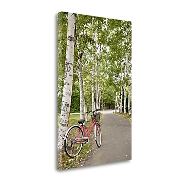 Tangletown Fine Art 'Japan Bicycle - 20' Photographic Print on Wrapped Canvas; 28'' H x 19'' W