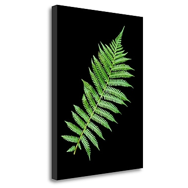 Tangletown Fine Art 'Floral Color - 18' Graphic Art Print on Wrapped Canvas; 29'' H x 21'' W