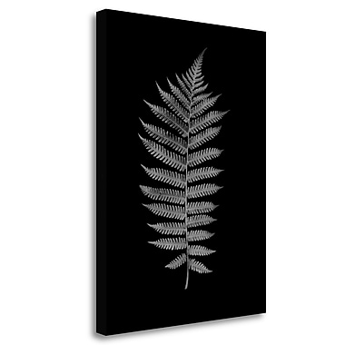 Tangletown Fine Art 'Floral B-W - 19' Graphic Art Print on Wrapped Canvas; 24'' H x 18'' W