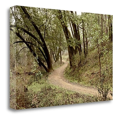 Tangletown Fine Art 'Oak Tree - 51' Photographic Print on Wrapped Canvas; 26'' H x 40'' W