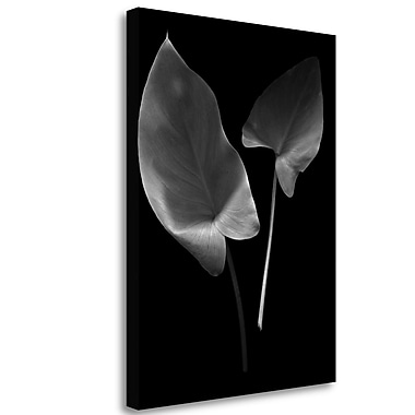 Tangletown Fine Art 'Floral B-W - 24' Graphic Art Print on Wrapped Canvas; 33'' H x 25'' W