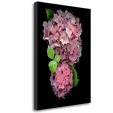 Tangletown Fine Art 'Floral Color - 29' Graphic Art Print on Wrapped Canvas; 47'' H x 35'' W
