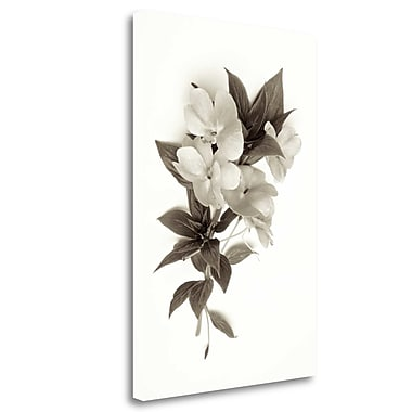 Tangletown Fine Art 'Garden Bloom - 4' Graphic Art Print on Wrapped Canvas; 24'' H x 16'' W