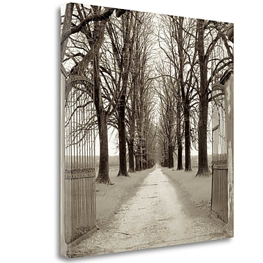 Tangletown Fine Art 'Veneto Giardini - 1' Photographic Print on Wrapped Canvas; 20'' H x 20'' W
