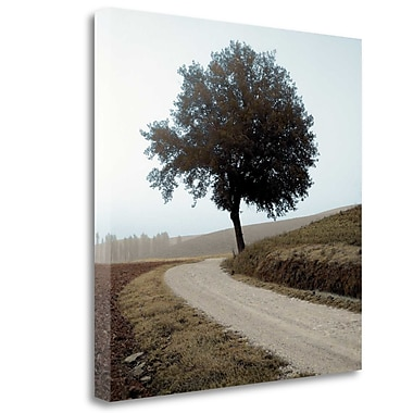 Tangletown Fine Art 'Tuscany - 12' Photographic Print on Wrapped Canvas; 35'' H x 35'' W