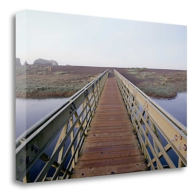 Tangletown Fine Art 'Lagoon Bridge - 1' Photographic Print on Wrapped Canvas; 21'' H x 32'' W
