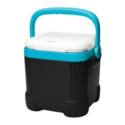 Igloo 12 Qt. Ice Cube Plastic Cooler; Black/White/Turquoise by