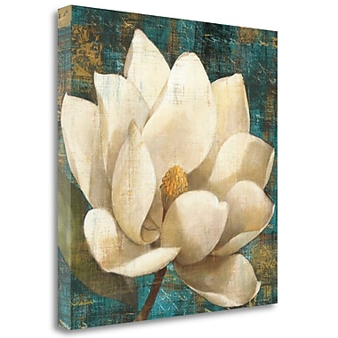 Tangletown Fine Art 'Magnolia Blossom' by Albena Hristova Painting Print on Wrapped Canvas