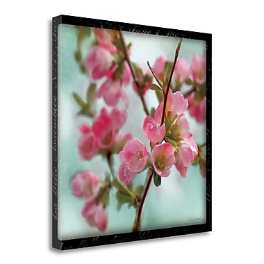 Tangletown Fine Art 'Quince Blossoms II' Photographic Print on Wrapped Canvas; 25'' H x 25'' W
