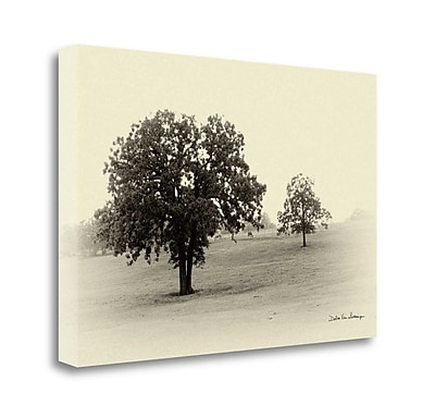 Tangletown Fine Art 'Horses and Trees II' Photographic Print on Wrapped Canvas; 20'' H x 29'' W
