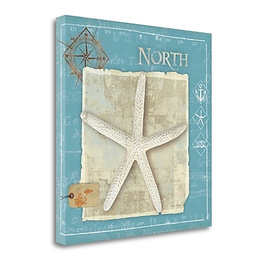 Tangletown Fine Art 'Points North' by Belinda Aldrich Graphic Art on Wrapped Canvas; 20'' H x 20'' W