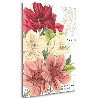 Tangletown Fine Art 'Azalee Jardin II' Graphic Art Print on Wrapped Canvas; 28'' H x 23'' W