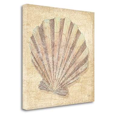 Tangletown Fine Art Tropical Island Shell II by Veronique Charron Painting Print on Wrapper Canvas