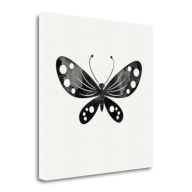 Tangletown Fine Art Black and White Butterfly III' Graphic Art Print on Canvas; 24'' H x 24'' W