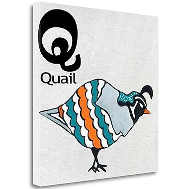 Tangletown Fine Art 'Q - Quail' Graphic Art Print on Canvas; 35'' H x 35'' W