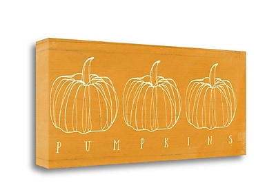 Tangletown Fine Art 'Pumpkins' Graphic Art Print on Wrapped Canvas; 16'' H x 40'' W
