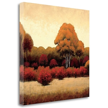 Tangletown Fine Art 'Autumn Forest I' Print on Wrapped Canvas; 20'' H x 20'' W