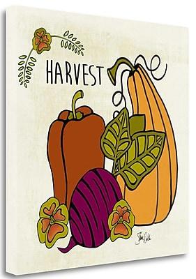 Tangletown Fine Art 'Harvest Vegetables' Graphic Art Print on Canvas; 35'' H x 35'' W
