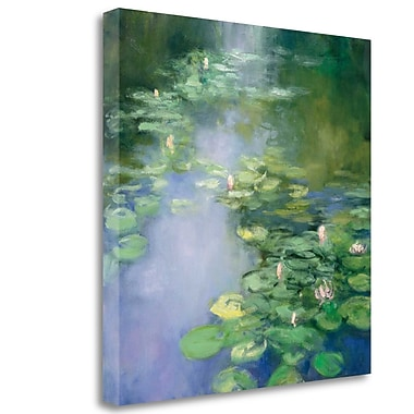 Tangletown Fine Art 'Blue Lily II' Print on Wrapped Canvas; 35'' H x 35'' W
