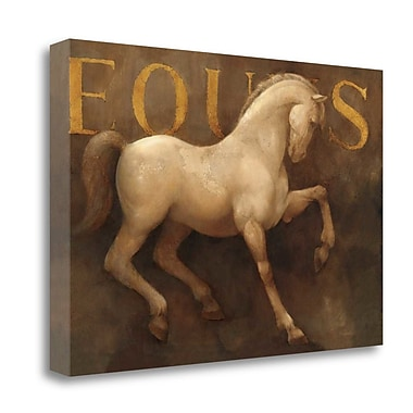 Tangletown Fine Art 'Equus' Graphic Art Print on Wrapped Canvas; 20'' H x 29'' W