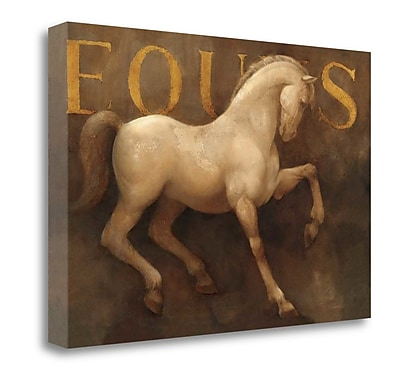 Tangletown Fine Art 'Equus' Graphic Art Print on Wrapped Canvas; 26'' H x 39'' W