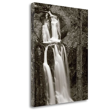 Tangletown Fine Art 'Kentucky Falls' Photographic Print on Wrapped Canvas; 45'' H x 35'' W