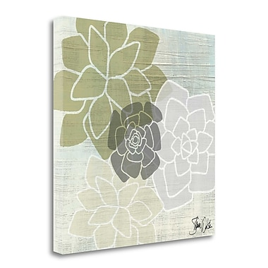 Tangletown Fine Art Succulents IV' Graphic Art Print on Wrapped Canvas; 18'' H x 18'' W
