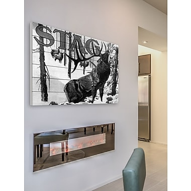 Latitude Run 'Stag' Painting Print on White Wood; 12'' H x 18'' W