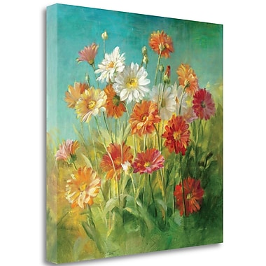 Tangletown Fine Art 'Painted Daisies' Print on Wrapped Canvas; 35'' H x 35'' W