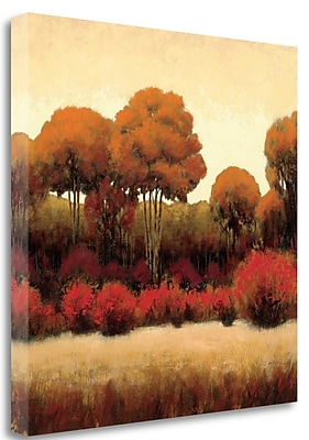 Tangletown Fine Art 'Autumn Forest II' Print on Wrapped Canvas; 30'' H x 30'' W