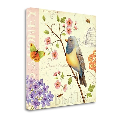 Tangletown Fine Art 'Birds and Bees I' Graphic Art Print on Wrapped Canvas; 24'' H x 24'' W