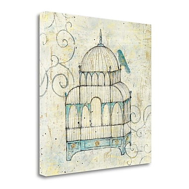 Tangletown Fine Art 'Bird Cage II' Graphic Art Print on Wrapped Canvas; 26'' H x 26'' W