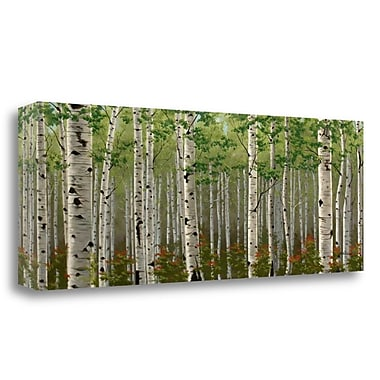 Tangletown Fine Art 'Summer Birch Forest' Print on Wrapped Canvas; 12'' H x 34'' W
