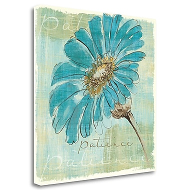 Tangletown Fine Art 'Spa Daisies II' Print on Wrapped Canvas; 20'' H x 20'' W