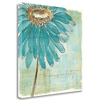 Tangletown Fine Art 'Spa Daisies III' Print on Wrapped Canvas; 20'' H x 20'' W