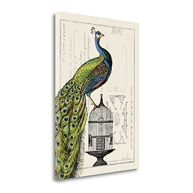 Tangletown Fine Art 'Peacock Birdcage I' Graphic Art Print on Wrapped Canvas; 28'' H x 20'' W