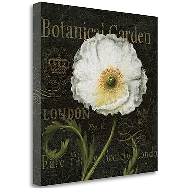 Tangletown Fine Art 'Botanical Garden II' Graphic Art Print on Wrapped Canvas; 26'' H x 26'' W
