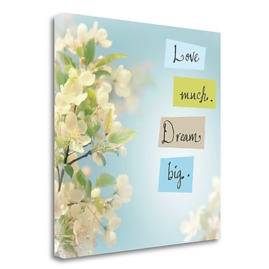 Tangletown Fine Art 'Love Much Dream Big' Graphic Art Print on Wrapped Canvas; 20'' H x 20'' W