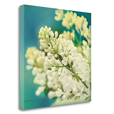 Tangletown Fine Art 'Natures Lilac Blossom' Photographic Print on Wrapped Canvas; 20'' H x 20'' W