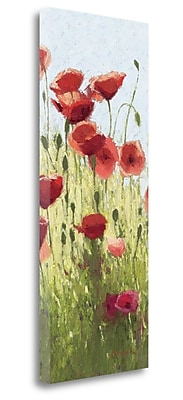 Tangletown Fine Art 'Mountain Poppies I Wag' Print on Wrapped Canvas; 40'' H x 16'' W