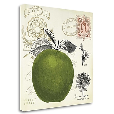 Tangletown Fine Art 'Apple Notes' Graphic Art Print on Wrapped Canvas; 24'' H x 24'' W