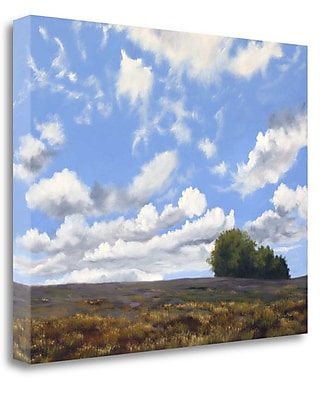 Tangletown Fine Art 'Big Sky' Print on Wrapped Canvas; 21'' H x 26'' W