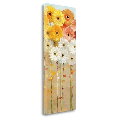 Tangletown Fine Art 'Daisies Fall I' Print on Wrapped Canvas; 40'' H x 16'' W