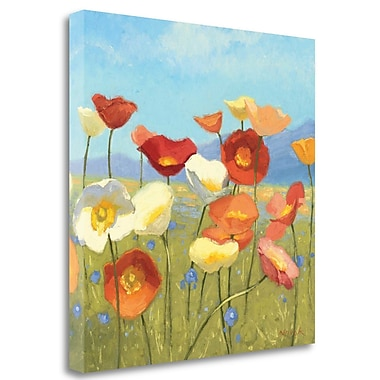 Tangletown Fine Art 'Springtime Meadow II' Print on Wrapped Canvas; 20'' H x 20'' W