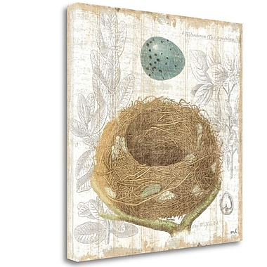 Tangletown Fine Art 'Botanical Nest III' Graphic Art Print on Wrapped Canvas; 20'' H x 20'' W