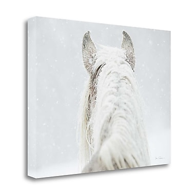 Tangletown Fine Art 'Winter Dreaming' Photographic Print on Canvas; 20'' H x 26'' W