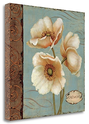 Tangletown Fine Art 'Windflower I' Print on Wrapped Canvas; 24'' H x 24'' W