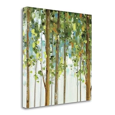 Tangletown Fine Art 'Forest Study II' Print on Canvas; 25'' H x 25'' W