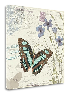 Tangletown Fine Art 'Papillon Tales I' Graphic Art Print on Wrapped Canvas; 25'' H x 25'' W