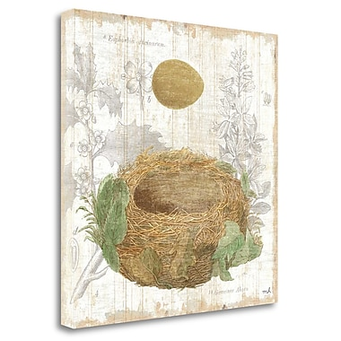 Tangletown Fine Art 'Botanical Nest IV' Graphic Art Print on Wrapped Canvas; 20'' H x 20'' W